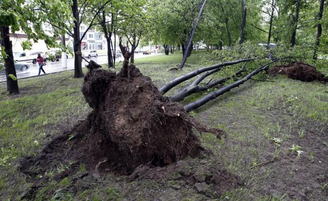 Zniszczenia w Moskwie