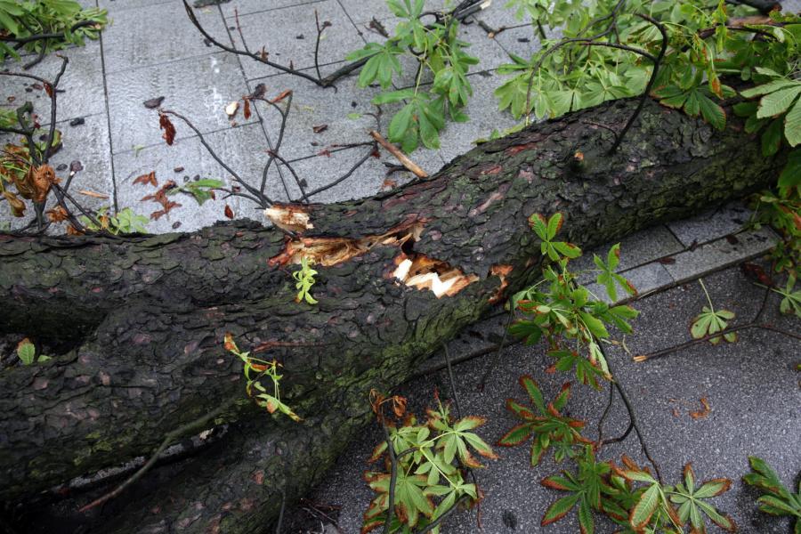 Zniszczenia po burzy