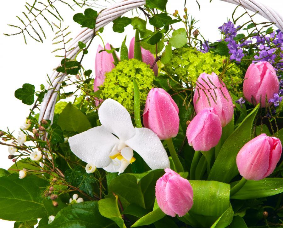 Kwiaty wręczone jako dowód wdzięczności to nie łapówka
