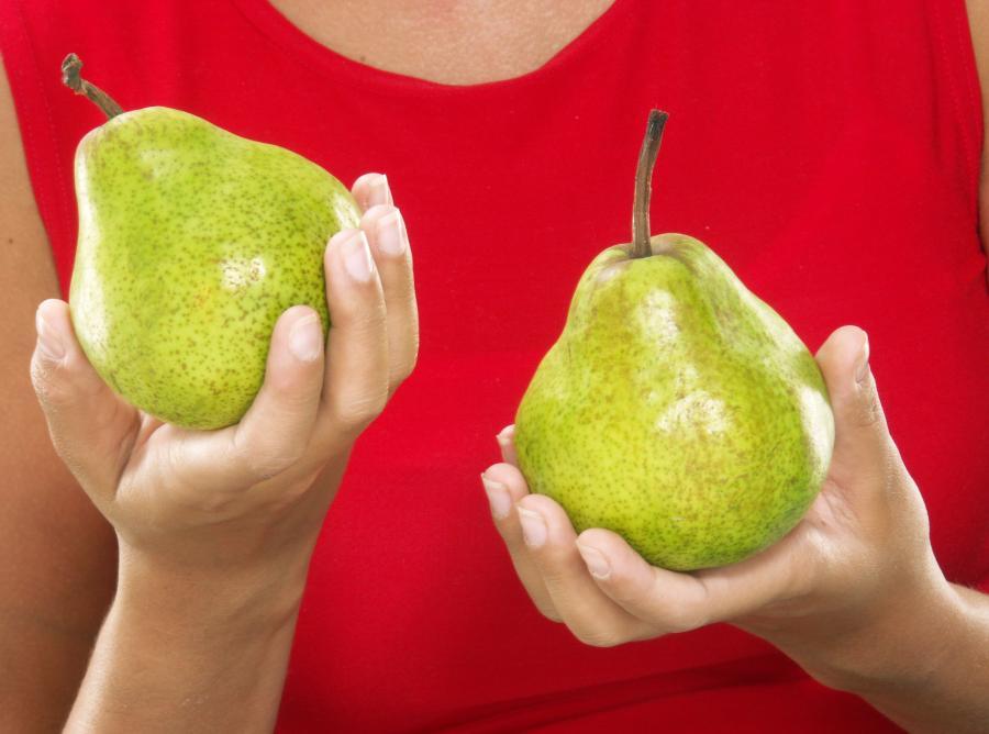 gruszki owoce