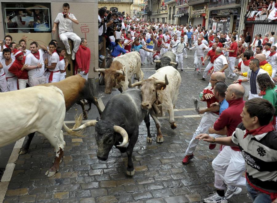 Byki na ulicach Pampeluny