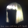 "Sia na okładce albumu ""1000 Forms of Fear"""