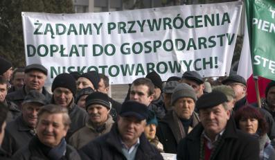 Protest rolników pod kieleckim Urzędem Wojewódzkim