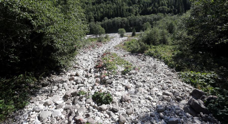 Wyschnięty górski potok