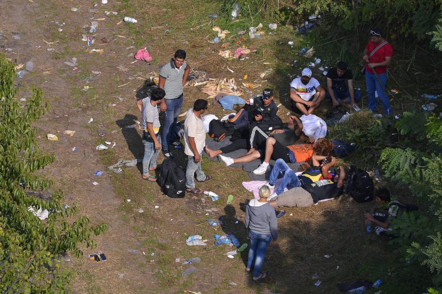Imigranci na granicy Serbii z Węgrami